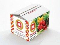 In thùng carton giá rẻ-đẹp tại tphcm