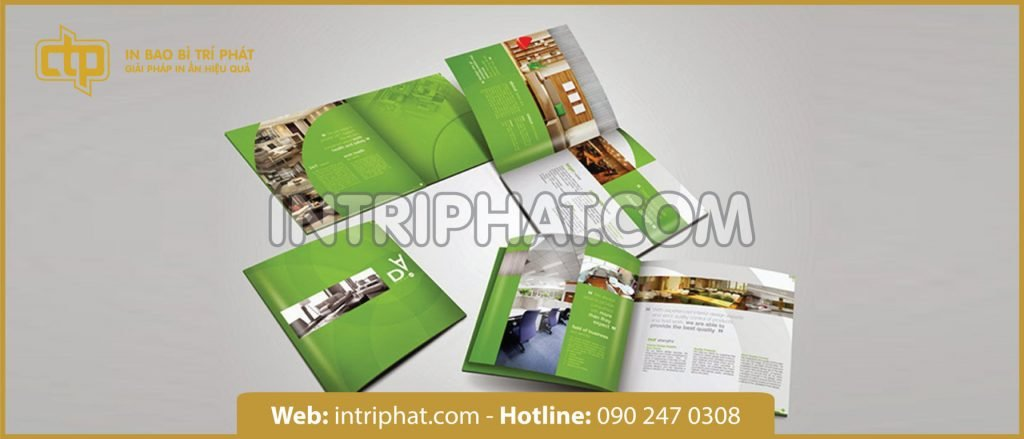 thiết kế in ấn catalogue