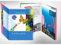 Lựa chọn về giấy khi in catalogue chất lượng