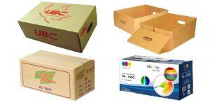 in thung carton