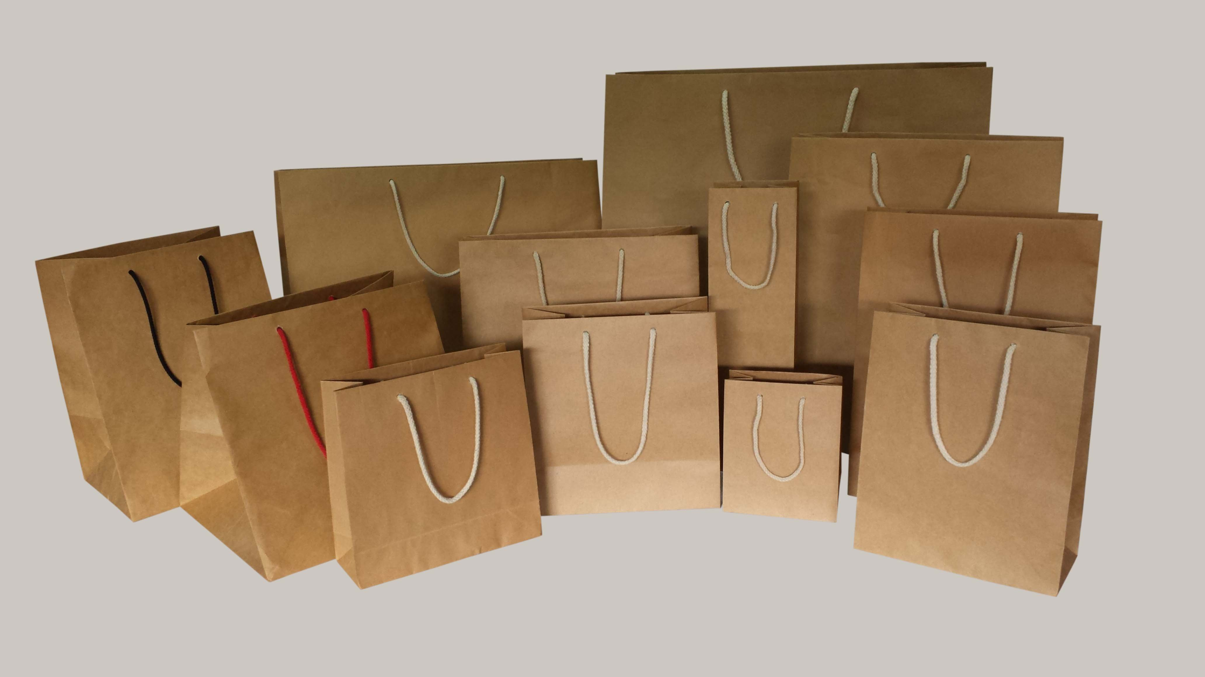 các loại in túi giấy tái chế