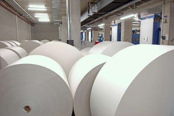 các loại giấy in offset