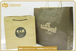 mẫu in túi giấy kraft theo yêu cầu
