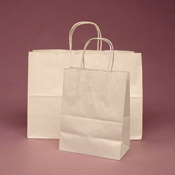 mẫu in túi giấy kraft trắng