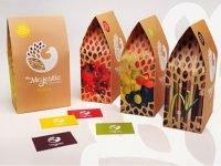 4 nguyên tắc vàng để thiết kế in bao bì đẹp cần phải biết