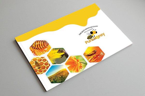Mẫu in brochure đẹp, sáng tạo