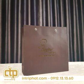 Mẫu in túi giấy hcm