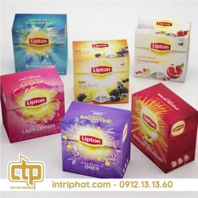 hop-giay-dep-tri-phat-02