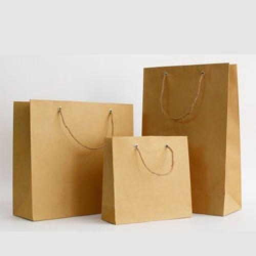mẫu in túi giấy kraft tân phú