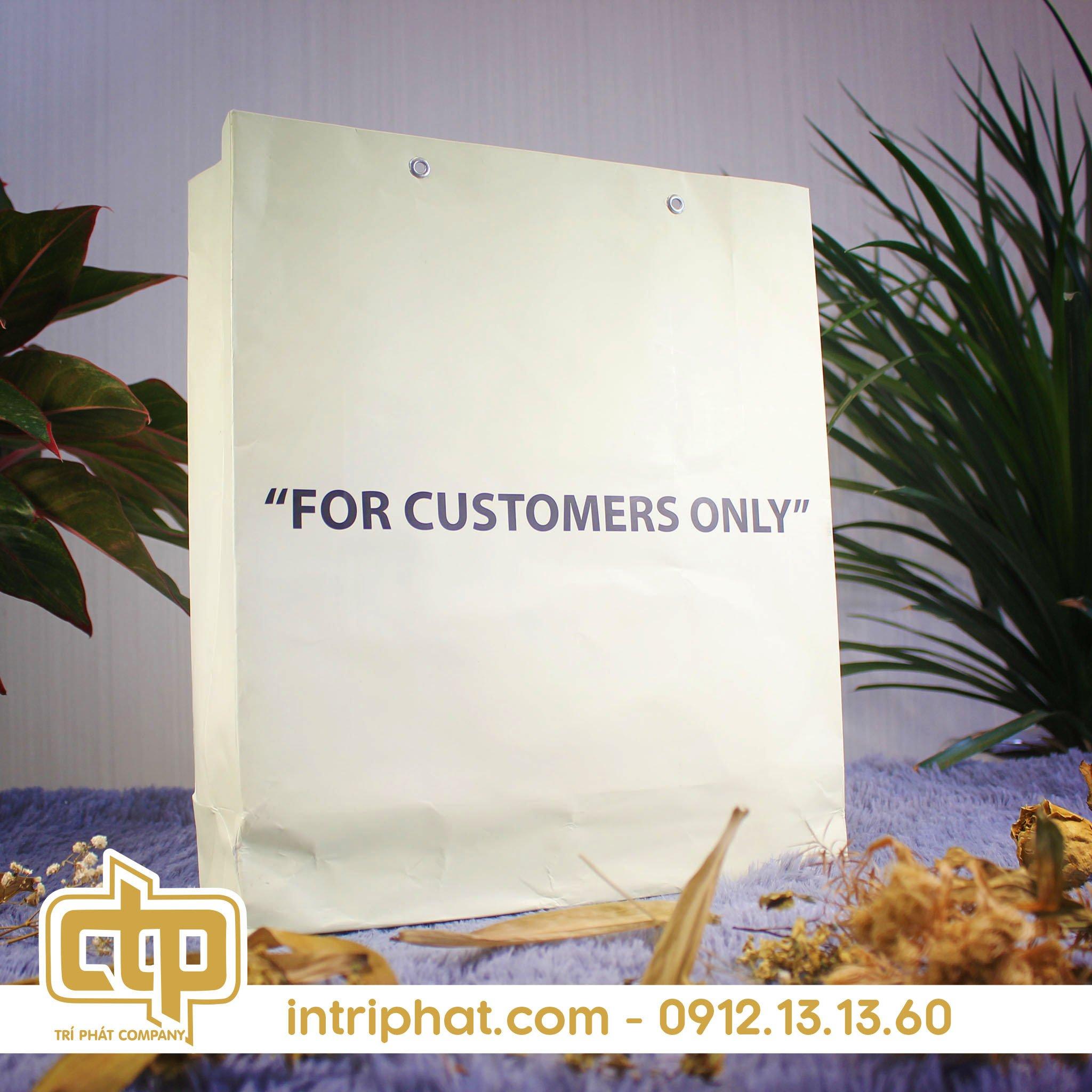 in túi giấy giá rẻ đựng sản phẩm