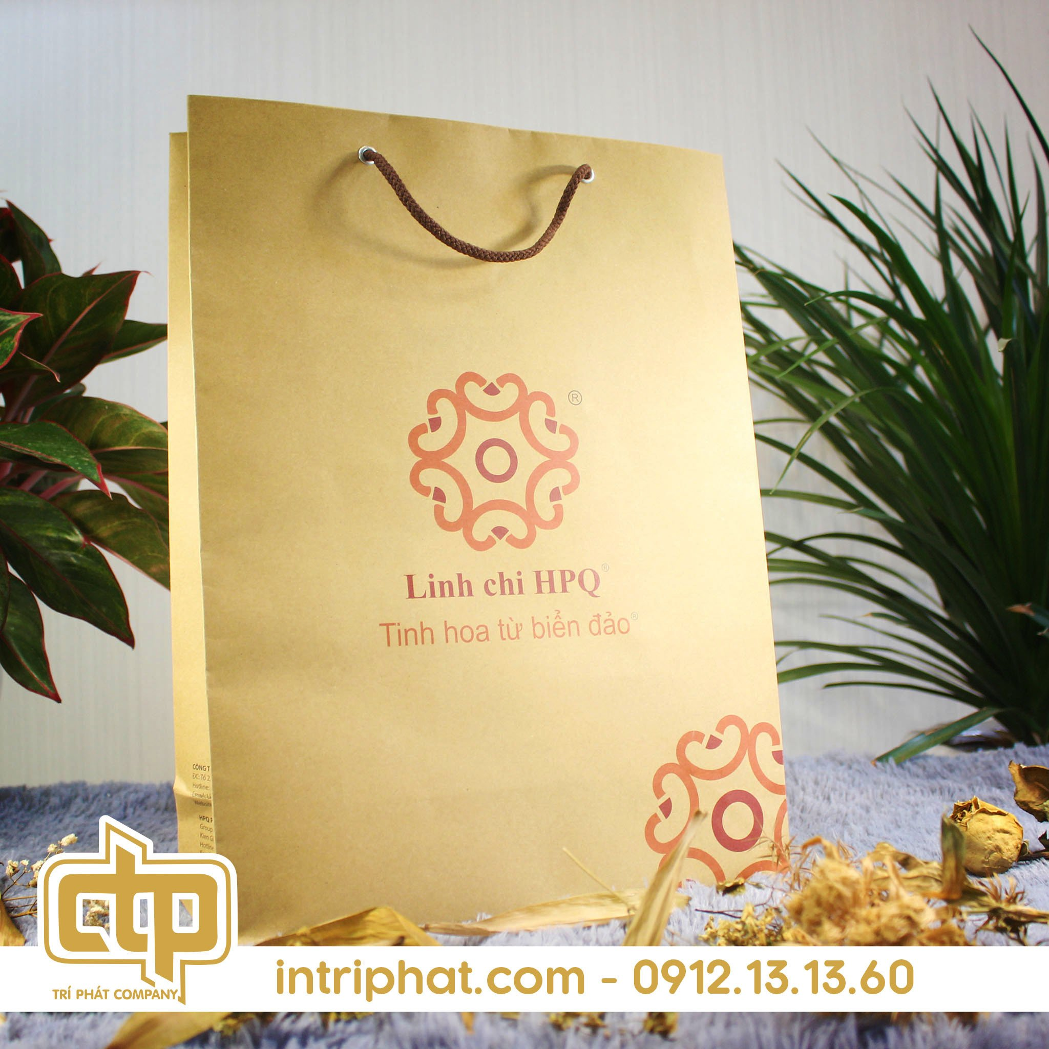 mẫu in túi giấy kraft đẹp cho shop