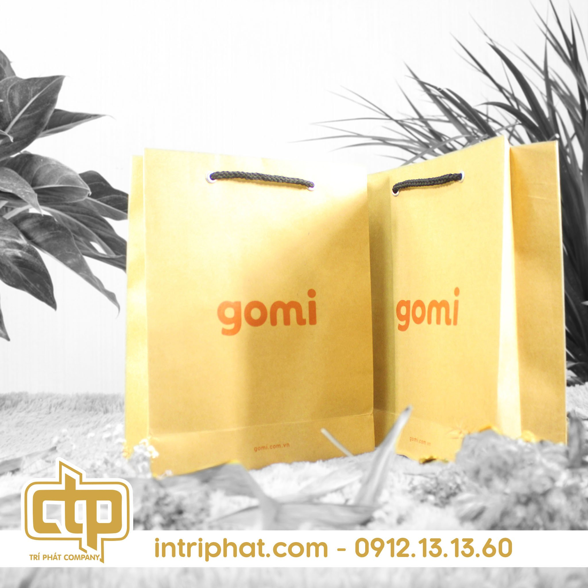 mẫu túi giấy đẹp cho cửa hàng thời trang