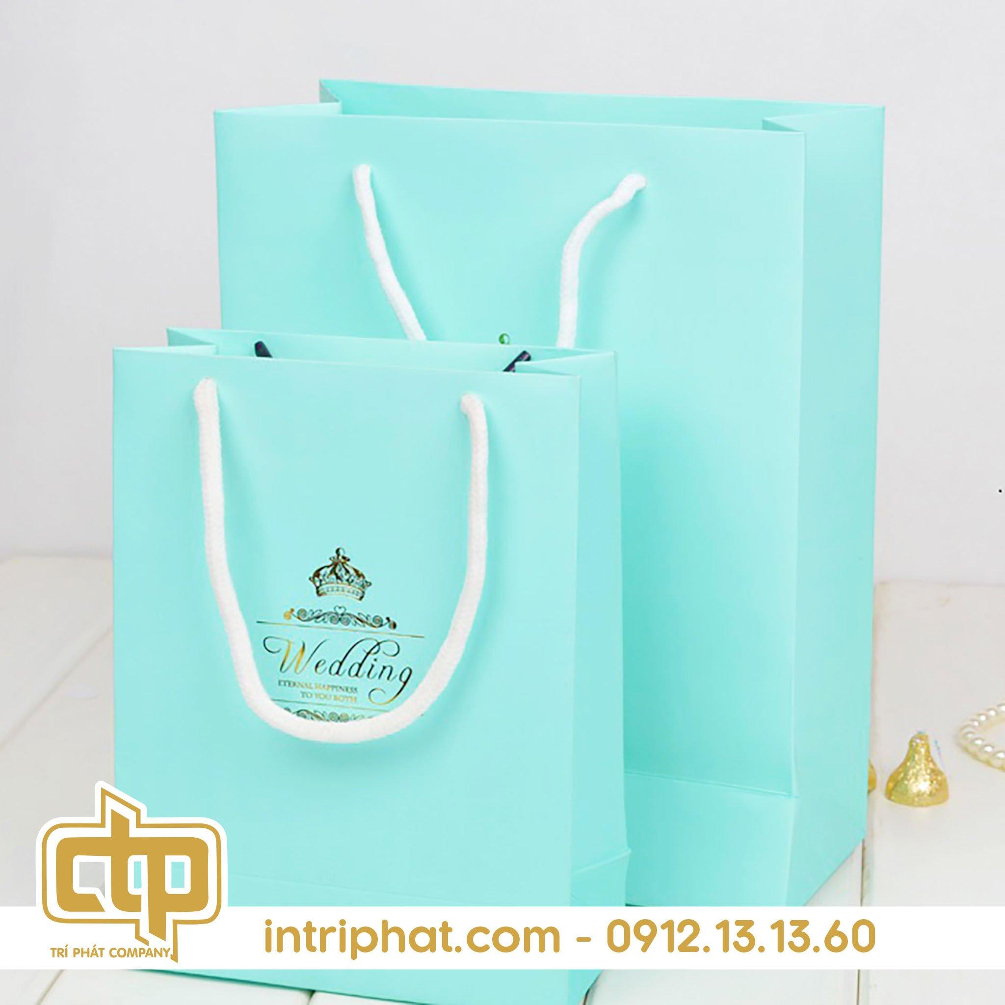 Những mẫu túi giấy đựng quà được thiết kế đẹp 4