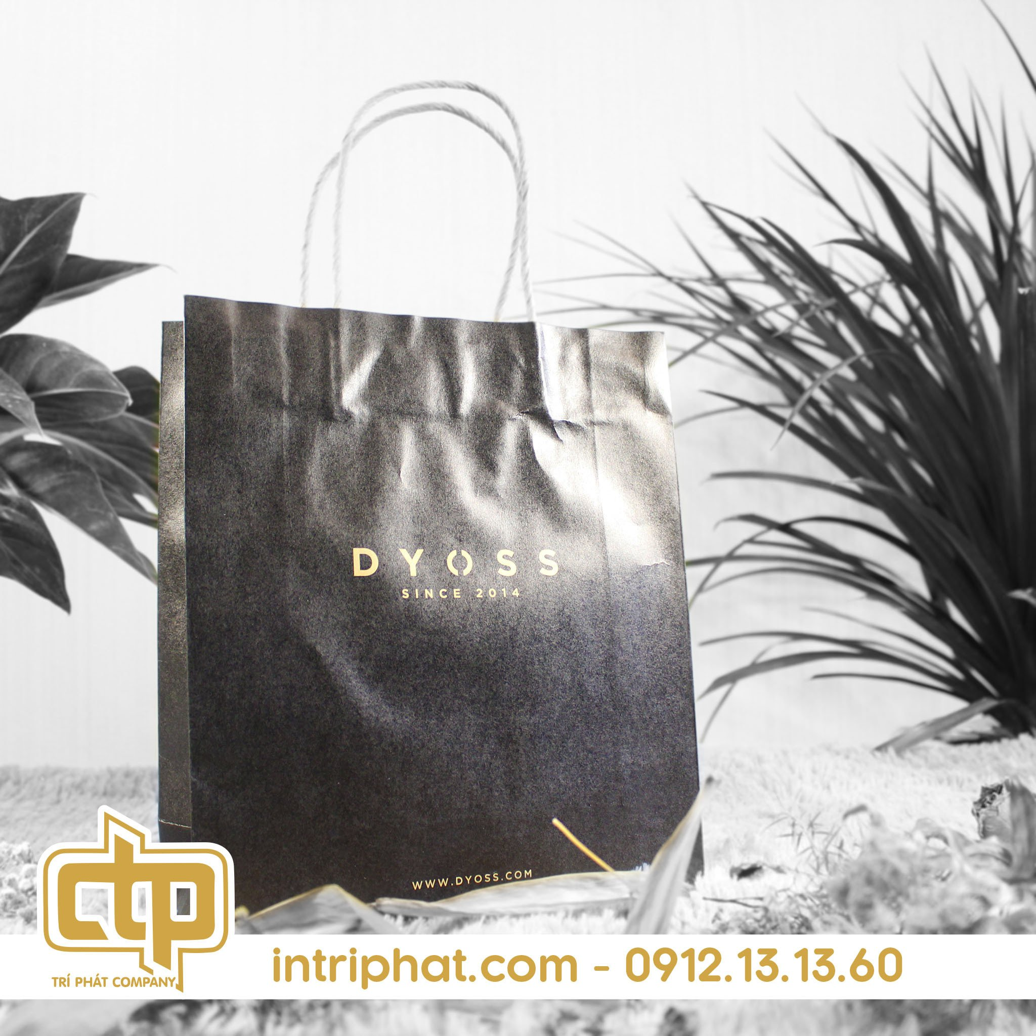 in túi giấy kraft có quai cho shop thời trang
