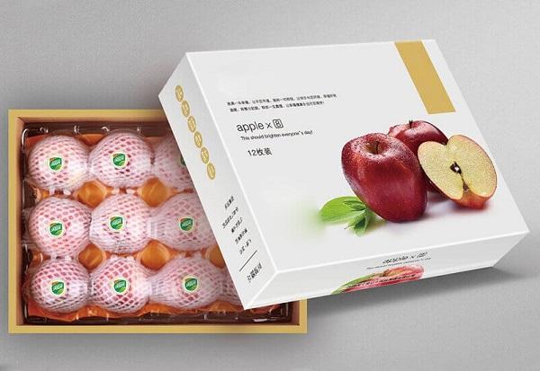 in hộp giấy đựng trái cây đẹp
