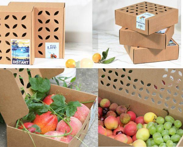 in hộp giấy đựng trái cây chất lượng