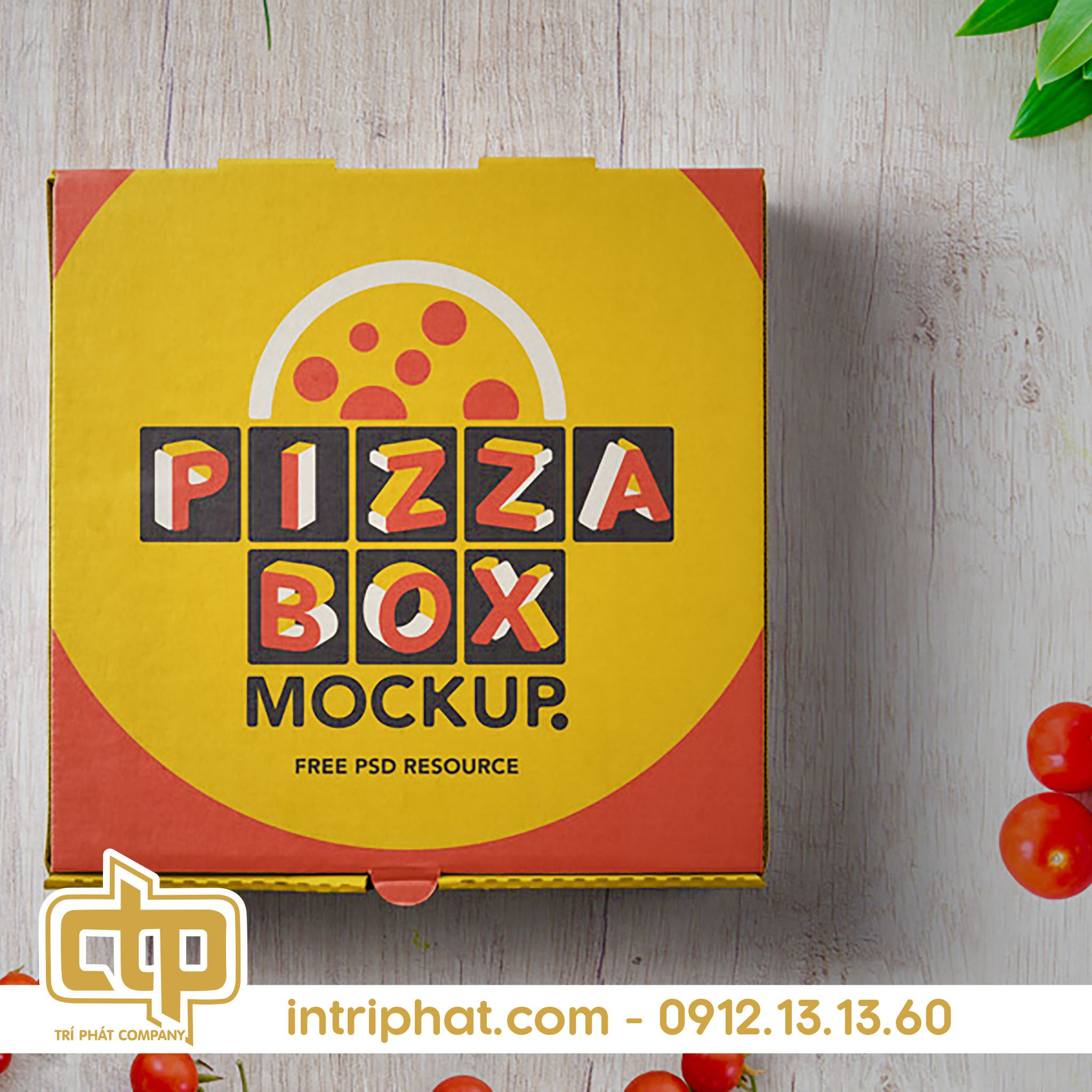 Mẫu hộp giấy đựng pizza